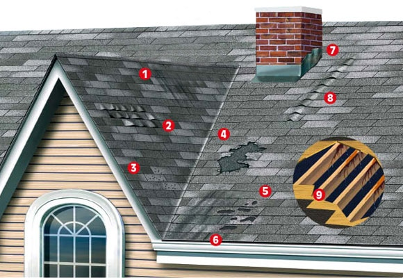 Signs Of Shingle Roof Damage Alpha Roofing And Interior